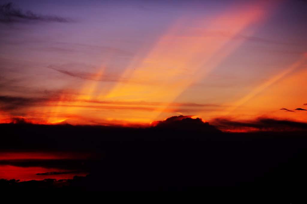 fotografia, materiale, libero il panorama, dipinga, fotografia di scorta,Una fenice del crepuscolo, Sole che mette, Rosso, Il sole, Alla buio