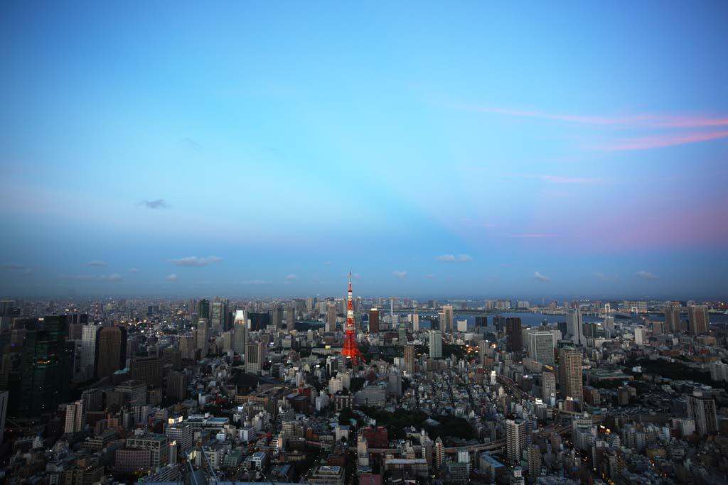 写真,素材,無料,フリー,フォト,クリエイティブ・コモンズ,風景,壁紙,東京全景, 東京タワー, 高層ビル, 東京湾, 都心