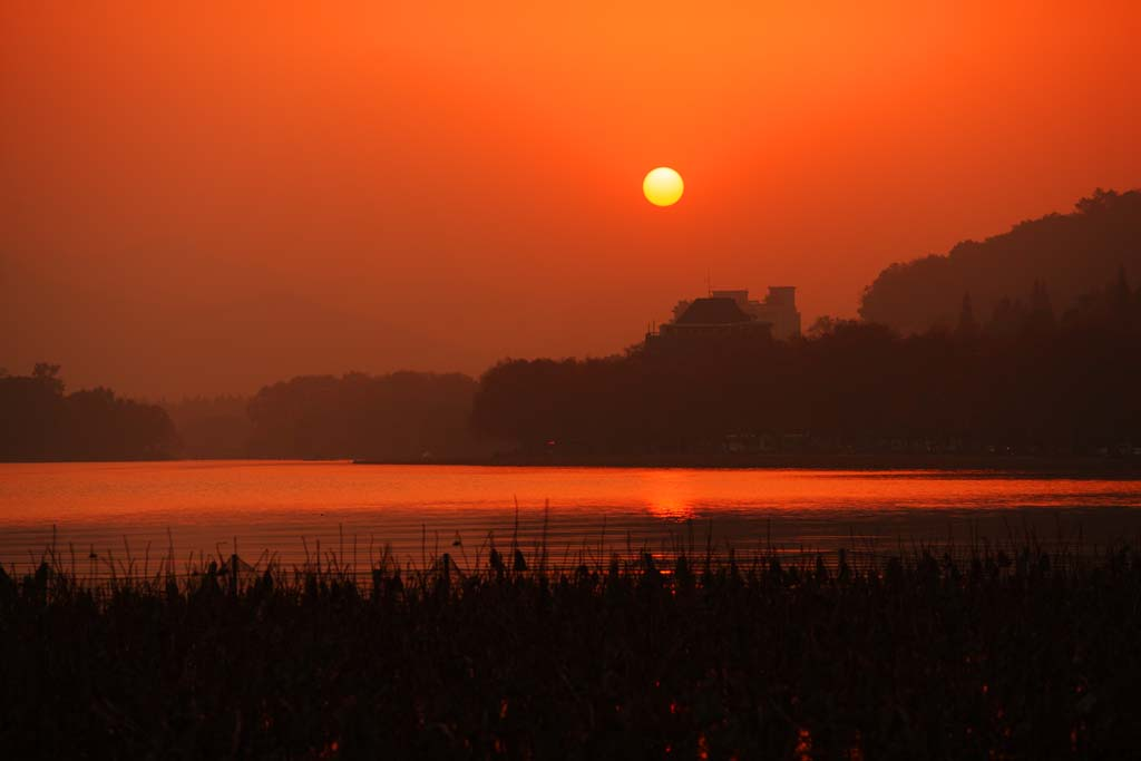 photo,material,free,landscape,picture,stock photo,Creative Commons,Dusk of the Xi-hu lake, lotus, The sun, Setting sun, The surface of the water