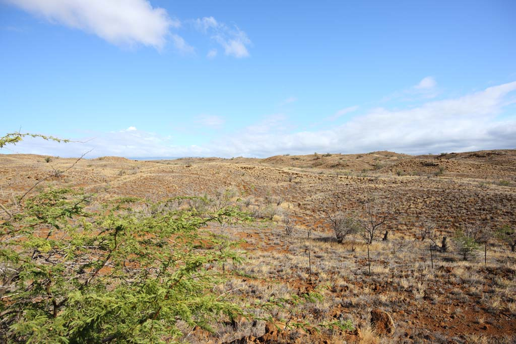 photo,material,free,landscape,picture,stock photo,Creative Commons,The earth of the lava, Green, Brown, Lava, blue sky