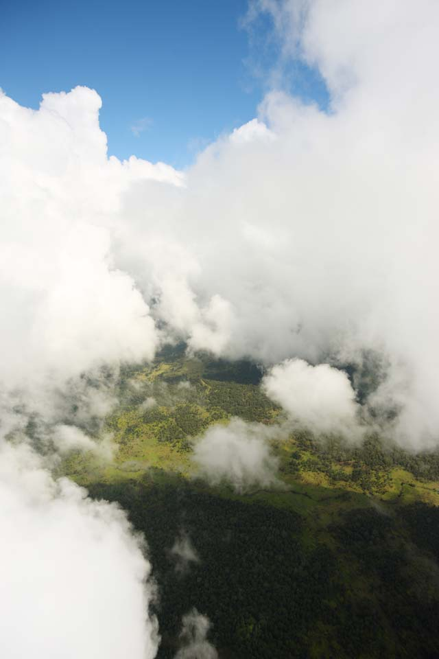 photo,material,free,landscape,picture,stock photo,Creative Commons,Hawaii Island aerial photography, cloud, forest, grassy plain,