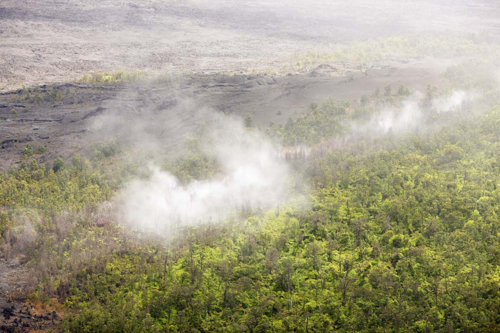 photo,material,free,landscape,picture,stock photo,Creative Commons,Hawaii Island aerial photography, Lava, The crater, crack in the ground, forest fire