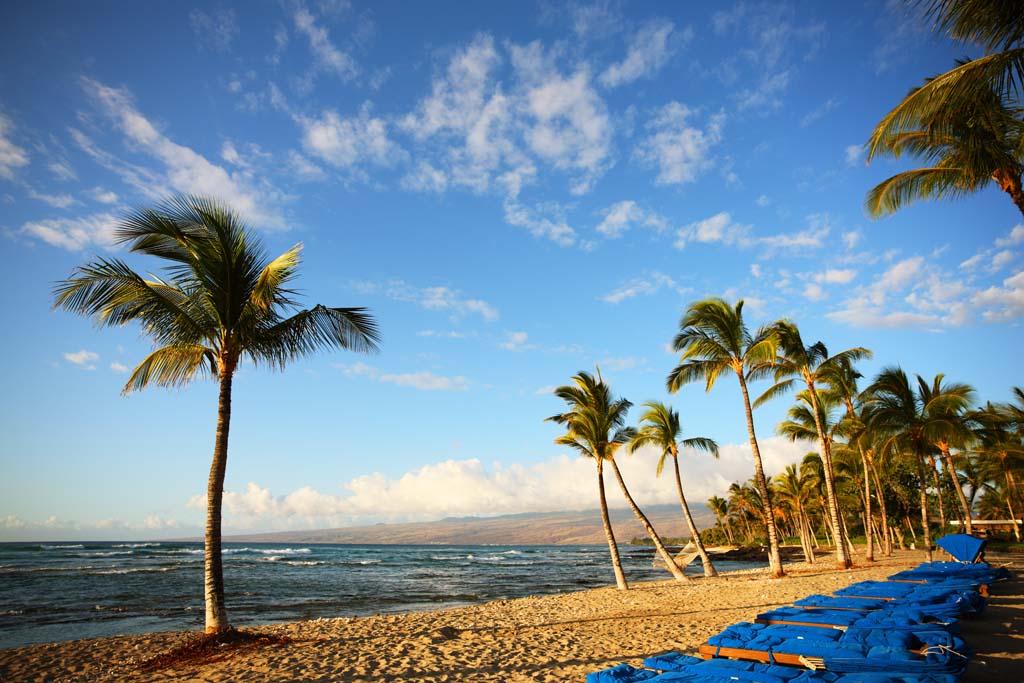 写真,素材,無料,フリー,フォト,クリエイティブ・コモンズ,風景,壁紙,ハワイ島 ビーチ, ビーチ, 椰子の木, ビーチチェアー, 波