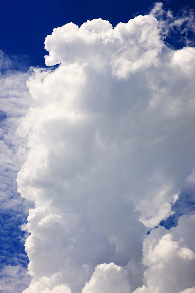photo,material,free,landscape,picture,stock photo,Creative Commons,Thunderhead, , , ,