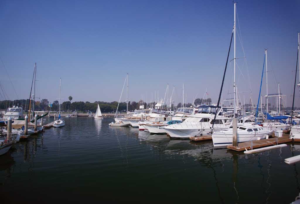 foto,tela,gratis,paisaje,fotograf�a,idea,Shot Harbour al atardecer, Yate, Mar, Puerto, M�stil