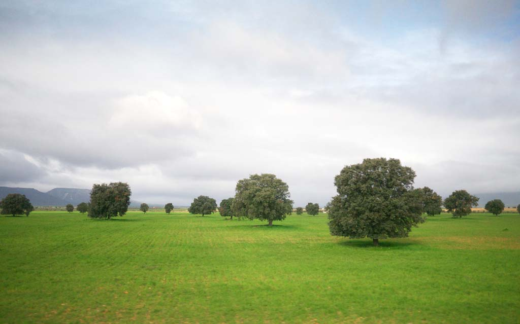 photo,material,free,landscape,picture,stock photo,Creative Commons,Panoramic Views, , , ,