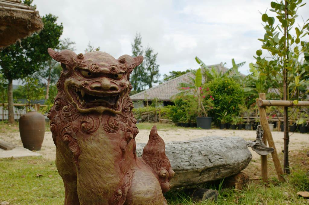 Foto, materieel, vrij, landschap, schilderstuk, bevoorraden foto,Defensie van de zee Heer, Dak, Tuin, Okinawa, Huis