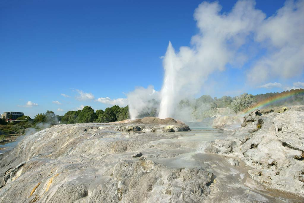 photo,material,free,landscape,picture,stock photo,Creative Commons,Geyser Pohutu Geyser, , , ,