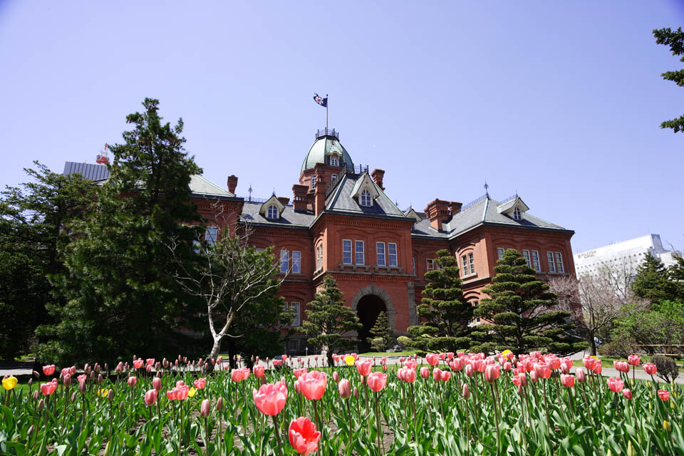 photo, la mati�re, libre, am�nage, d�crivez, photo de la r�serve,Agence Hokkaido, Le bureau de gouvernement Hokkaido, B�timent de l'Europ�en-style, construire, brique