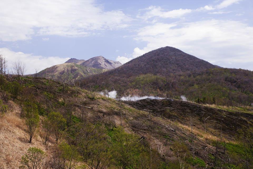 写真,素材,無料,フリー,フォト,クリエイティブ・コモンズ,風景,壁紙,有珠山火口付近, 噴火, 噴煙, 倒木, マグマ