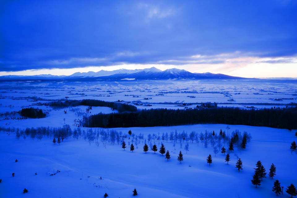 photo,material,free,landscape,picture,stock photo,Creative Commons,The daybreak of Furano, snowy field, mountain, tree, field