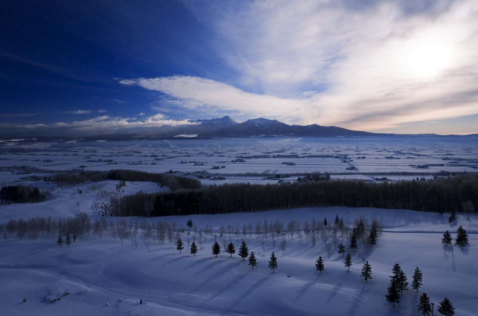 photo,material,free,landscape,picture,stock photo,Creative Commons,Morning of Furano, snowy field, mountain, tree, field