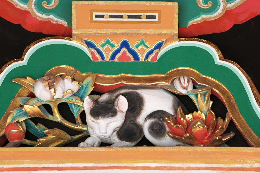 photo,material,free,landscape,picture,stock photo,Creative Commons,A sleep cat of Tosho-gu Shrine, sleep cat, world heritage, Jingoro Hidari, wood carving