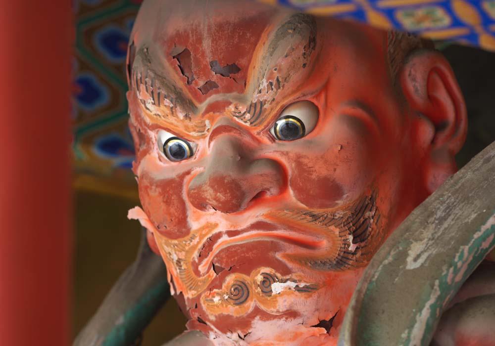 fotografia, materiale, libero il panorama, dipinga, fotografia di scorta,Due immagine di re di Deva di Tosho-gu il Sacrario, Due re di Deva, Rosso, faccia,