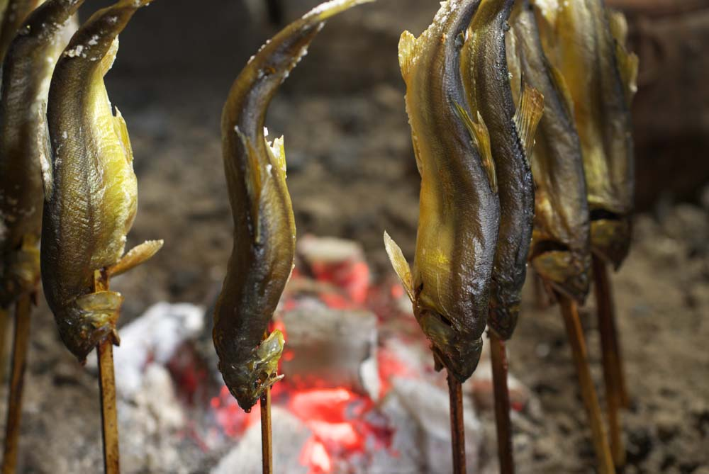 foto,tela,gratis,paisaje,fotograf�a,idea,Carb�n prender un fuego de un sweetfish, Sweetfish, , , Pescado dulce