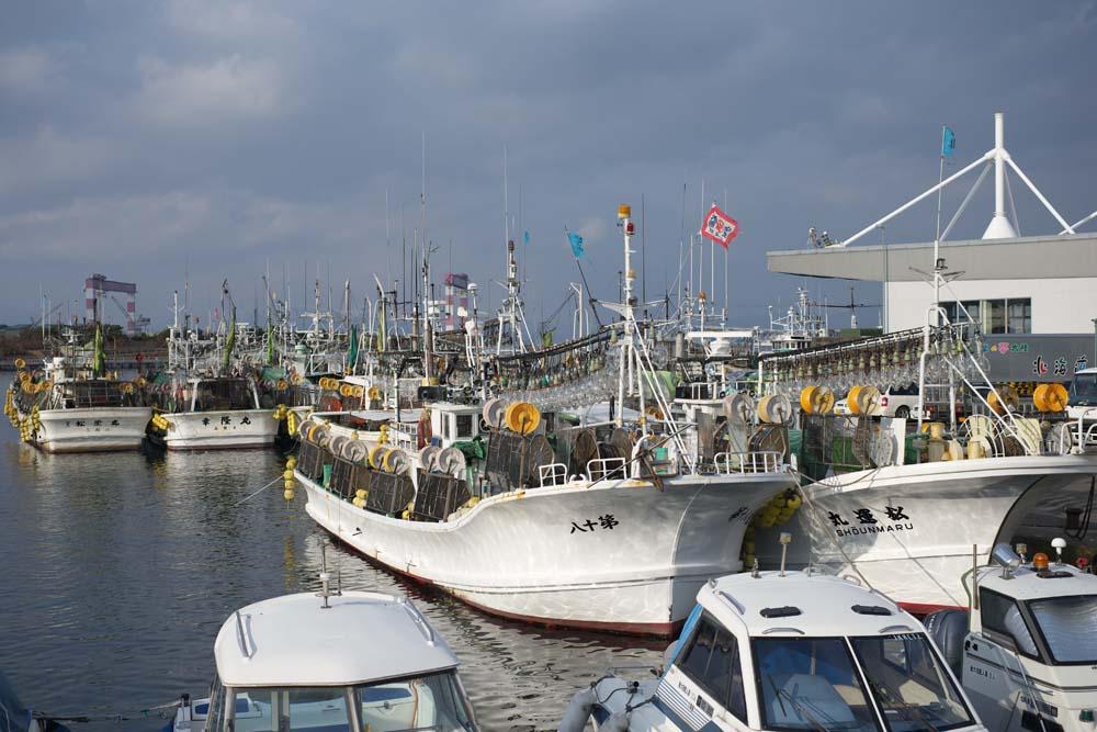 photo, la matière, libre, aménage, décrivez, photo de la réserve,Une seiche qui pêche le bateau de pêche, , seiche, pêcheur, Pêche