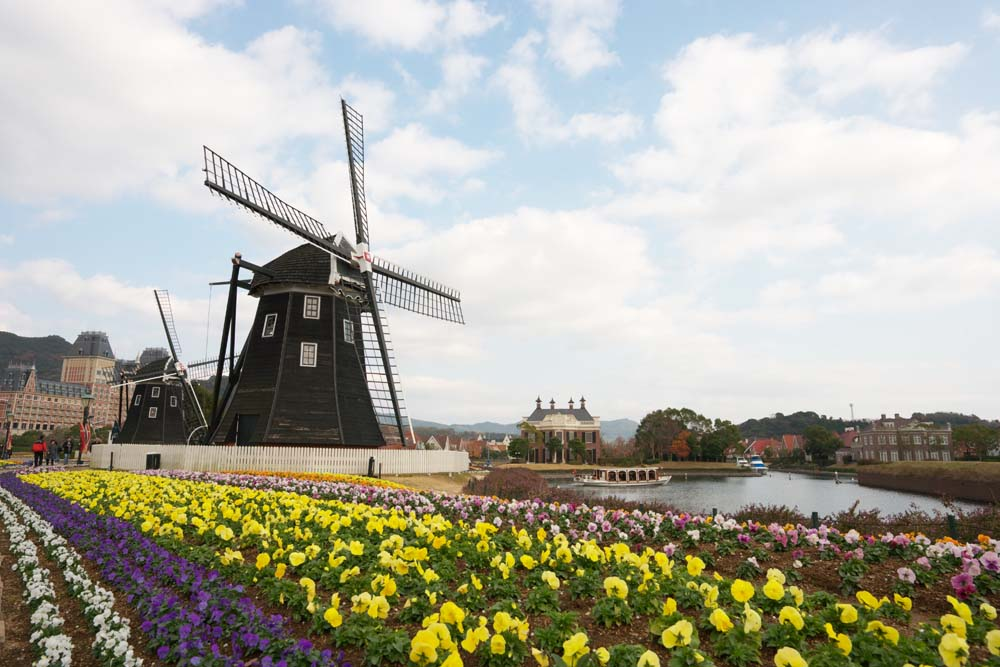 photo,material,free,landscape,picture,stock photo,Creative Commons,A flower garden and a windmill, cloud, canal, The Netherlands, windmill