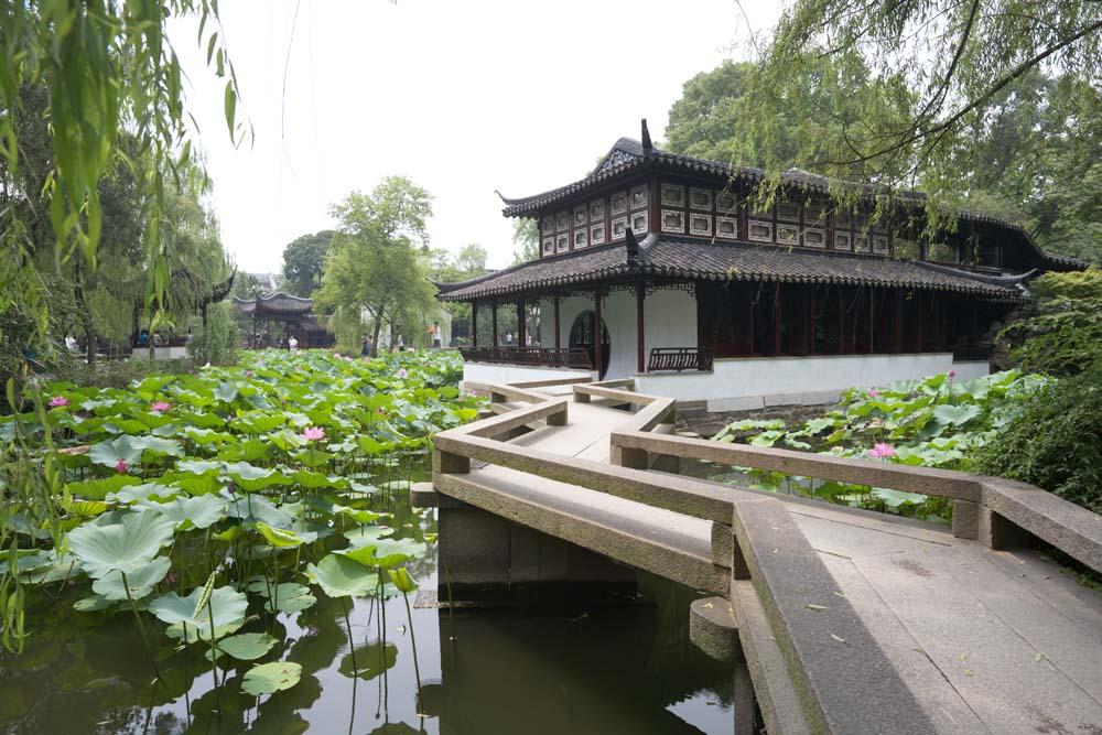 Foto, materiell, befreit, Landschaft, Bild, hat Foto auf Lager,Miyama-Turm von Zhuozhengyuan, Architektur, Brücke, Hasuike, Garten