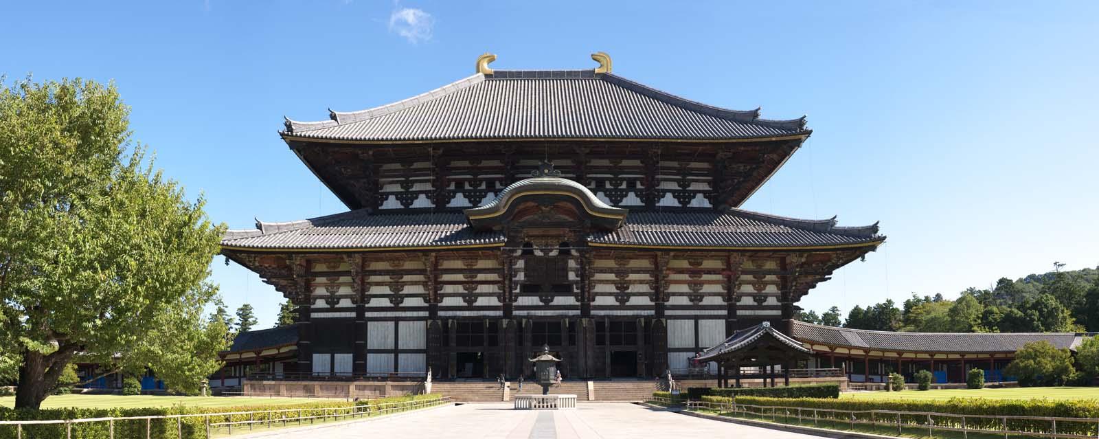 Foto, materieel, vrij, landschap, schilderstuk, bevoorraden foto,De Todai-ji Temple Hall van de Great Buddha, Groot standbeeld van De boeddha, Van hout gebouw, Boeddhisme, Tempel