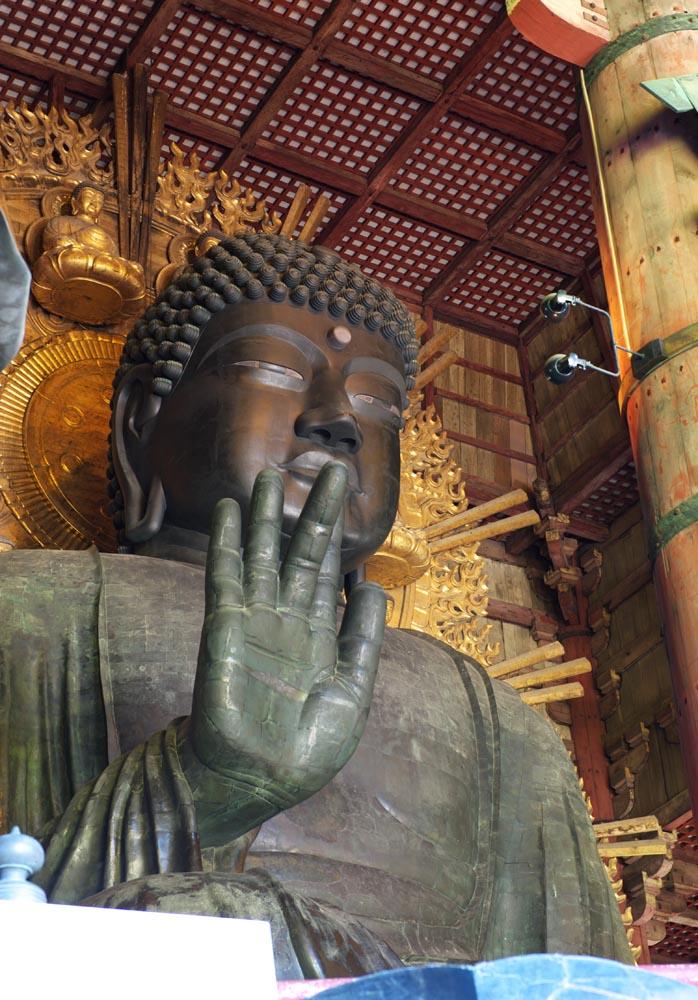 fotografia, material, livra, ajardine, imagine, proveja fotografia,Uma grande est�tua de Buda de Nara, Bronze, grande est�tua de Buda, Budismo, Imagem budista