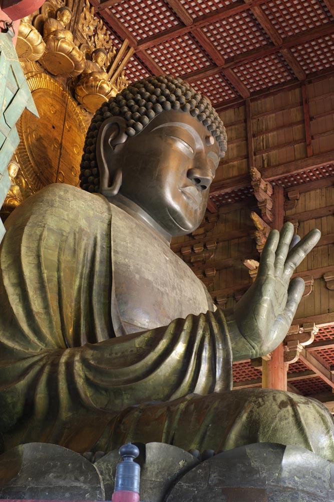写真,素材,無料,フリー,フォト,クリエイティブ・コモンズ,風景,壁紙,奈良の大仏, 青銅, 大仏, 仏教, 仏像