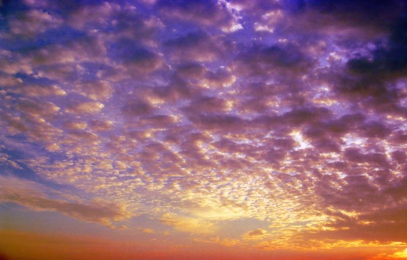 photo,material,free,landscape,picture,stock photo,Creative Commons,Clouds at sundown 2, cloud, setting sun, blue sky,