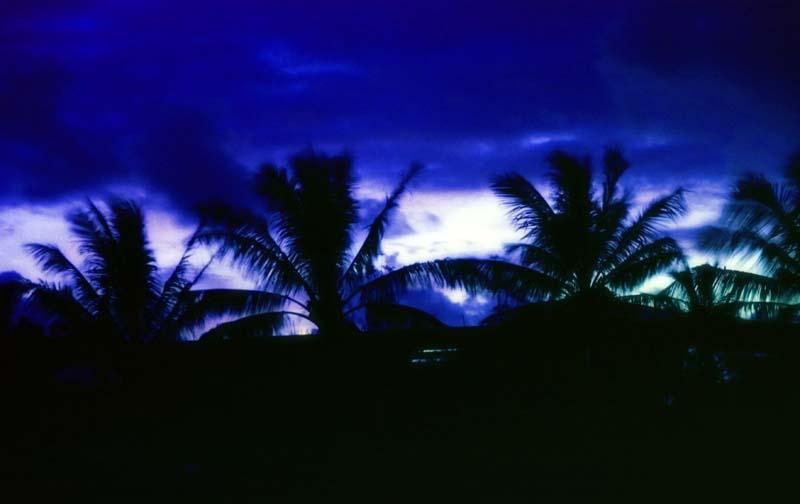 foto,tela,gratis,paisaje,fotograf�a,idea,Comienza la tempestad., Amanecer, Color azul, Blanco, �rbol