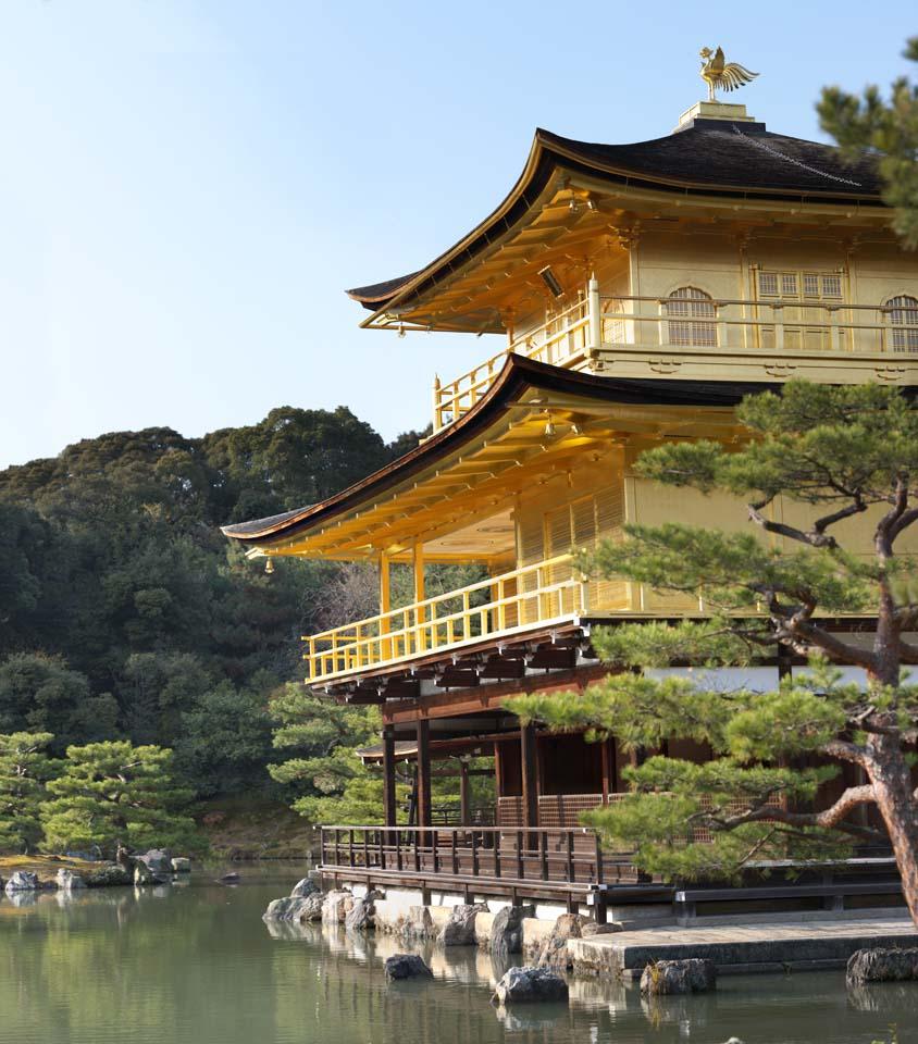 photo, la mati�re, libre, am�nage, d�crivez, photo de la r�serve,Pavillon d'Or Temple reliquaire Hall, H�ritage Mondial, Pavillon d'or, Ashikaga Yoshimitsu, Kyoto