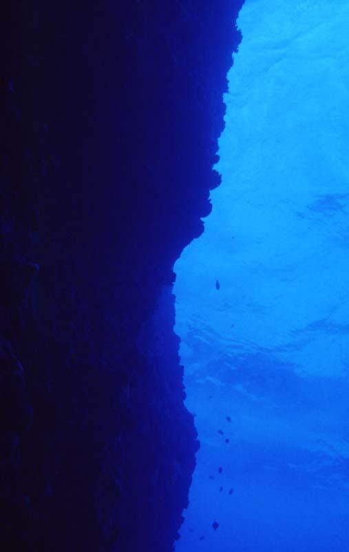 fotografia, materiale, libero il panorama, dipinga, fotografia di scorta,Pesce di una rupe, pietra, blu, ,