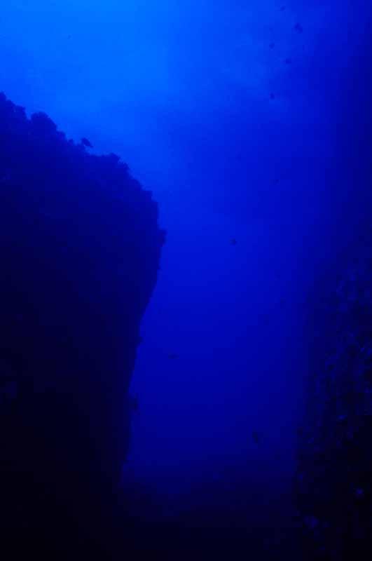 foto,tela,gratis,paisaje,fotograf�a,idea,En las profundidades del mar, Burbuja, Color azul, ,