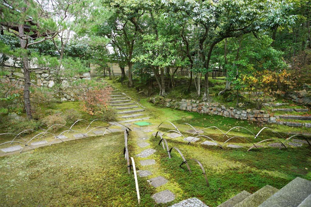 ����, ������������, ���������, ������, ����������, ���� �����.,Ninna-ji ���� ����� Akira, ���, ������ stairway, �������, �������