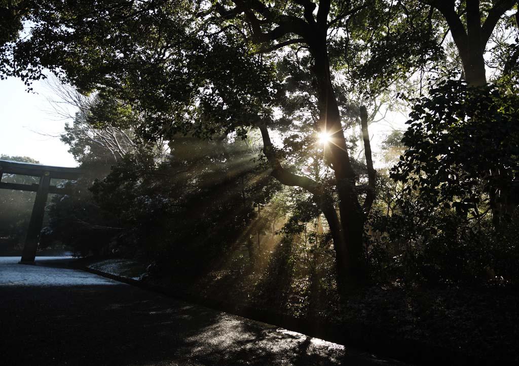 fotografia, materiale, libero il panorama, dipinga, fotografia di scorta,La luce dell'oracolo, Sei Dio, linea leggera, Luce sacra, Luminosit�