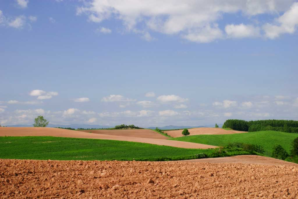 photo,material,free,landscape,picture,stock photo,Creative Commons,Farmland and cloud, soil, cloud, blue sky, field