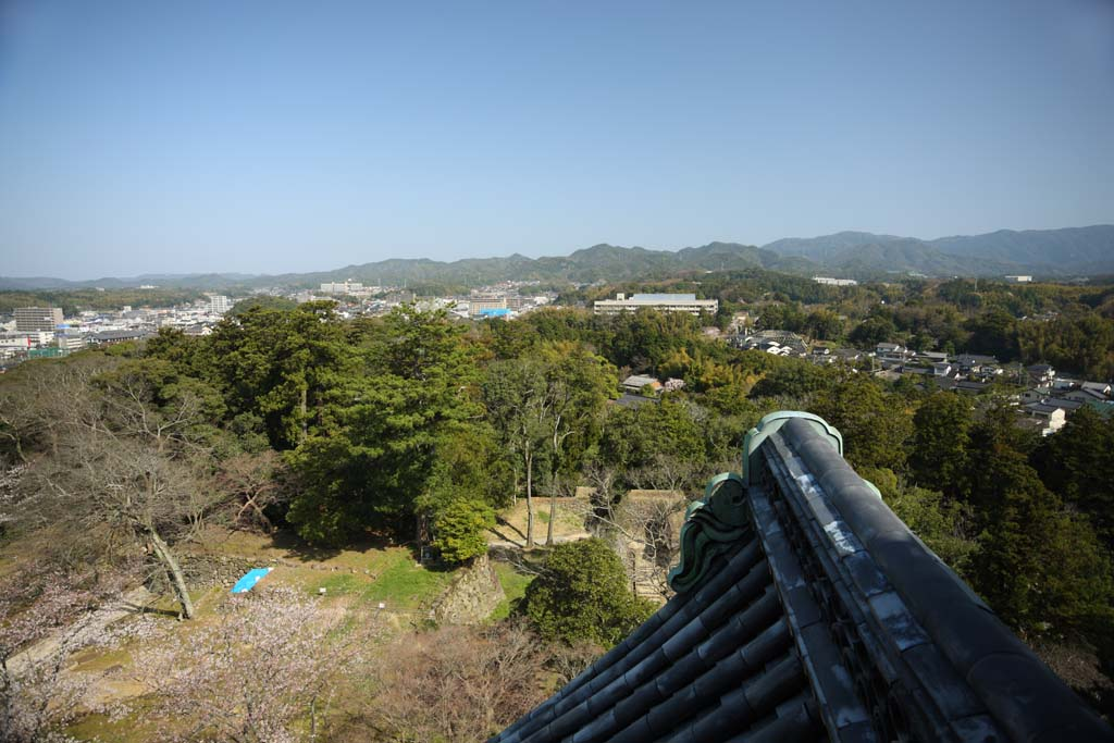 photo,material,free,landscape,picture,stock photo,Creative Commons,The Matsue city, roof tile, building, pine, blue sky