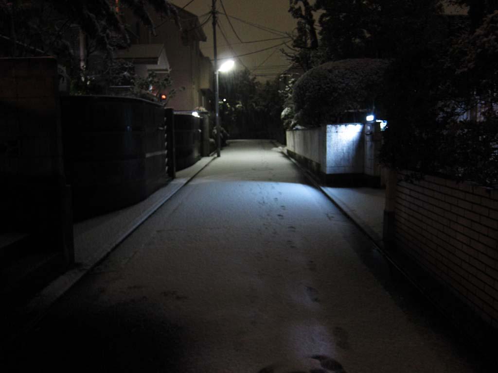 ゆんフリー写真素材集 No 13832 雪の道 日本 東京